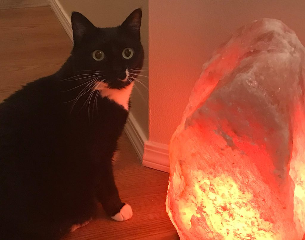 Large Himalayan Salt Lamp The First Thing Our Guests Notice